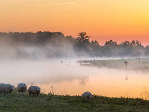 Nieuwe Hollandse Waterlinie gemeente Houten